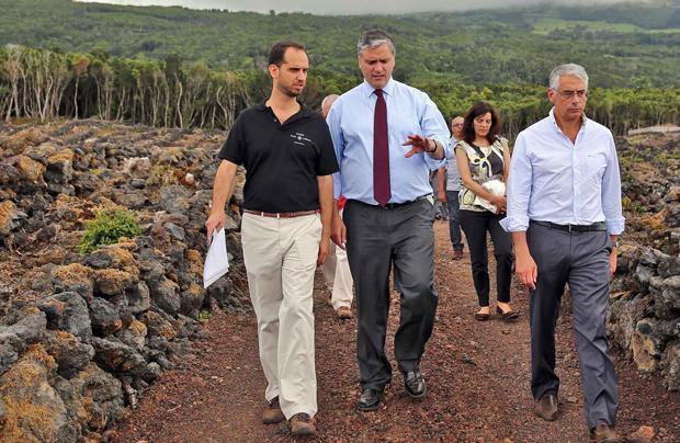 Vasco Cordeiro destaca aposta no aproveitamento do potencial do setor vitivinícola para criação de emprego e riqueza