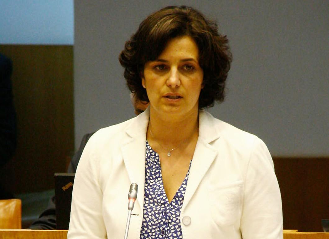 Comissariado para a Infância e regulação da profissão de Ama aprovados hoje na Assembleia Legislativa
