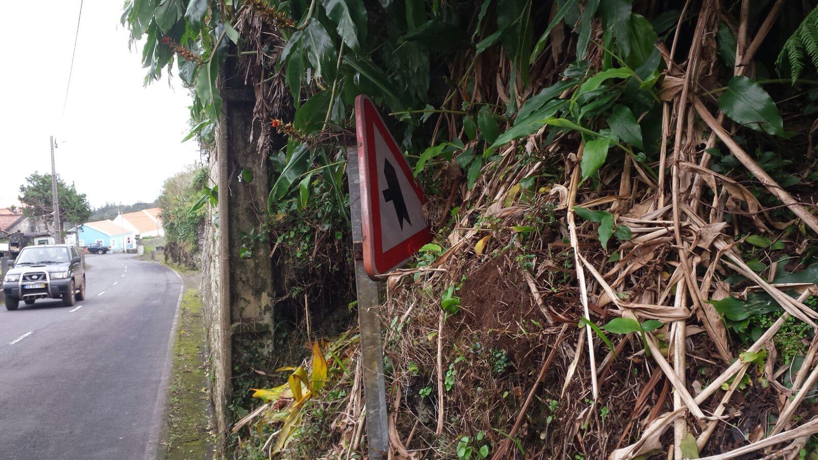 Estradas de São Jorge vão ser intervencionadas pelo Governo no que toca a marcação rodoviária até final de fevereiro