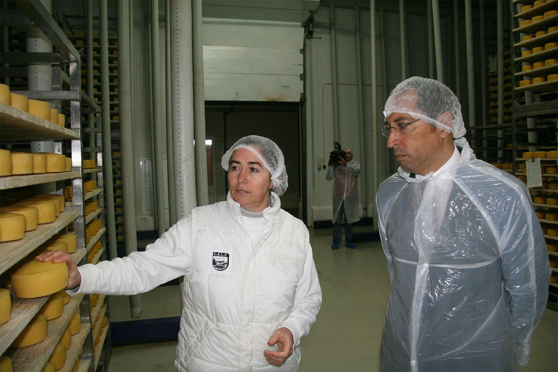 Aumento da produção de leite é importante para o setor agrícola no Faial, afirma João Ponte