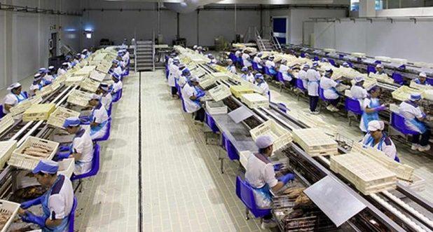 BE questiona Governo Regional sobre processo da nova fábrica da Cofaco no Pico