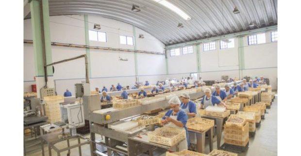 PCP quer explicações do Governo sobre possível privatização da Indústria Conserveira de Santa Catarina