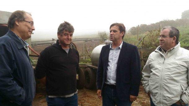 Diretor Regional da Agricultura afirma que o bem-estar animal é uma prioridade nos Açores