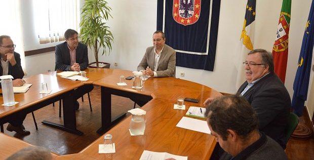 Governo dos Açores decide novo apoio à importação de alimentos para o gado