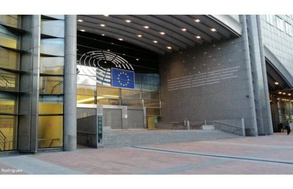 Bruxelas aprova ajuda de Estado de 10 ME para agricultores açorianos